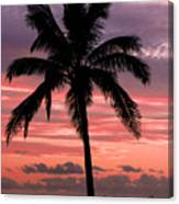 Hawaiian Sunset With Coconut Palm Tree Canvas Print