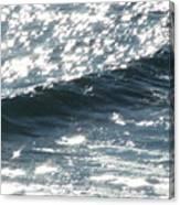 Hawaiian Wave Canvas Print