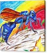 Hawk Wasp Canvas Print