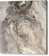 Hawkhair Canvas Print