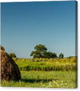Hay Bale On A Rural Field Canvas Print