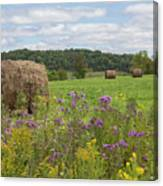 Hay Bales In Summer  Canvas Print