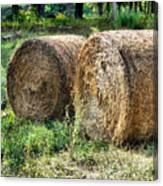 Hay Bay Rolls 3 Canvas Print