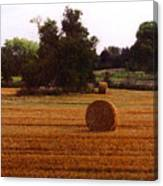 Hay Rolls 2 Db  2 Canvas Print