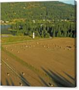 Hay Rolls And A Silo Canvas Print