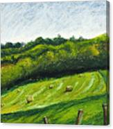 Hayfield Canvas Print