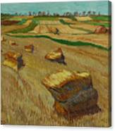 Haystacks In Moravia Canvas Print