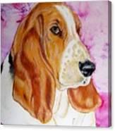 Hazel 2014 Canvas Print