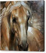 Head Horse 2 Canvas Print