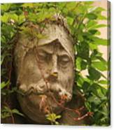 Head With Vines Canvas Print