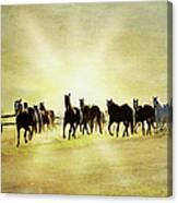 Headed Home Ll Canvas Print