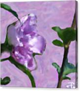 Heal Me On Mornings Dew Canvas Print