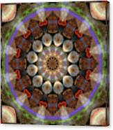Healing Mandala 30 Canvas Print