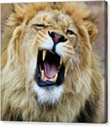 Hear Me Roar Canvas Print