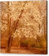 Hear The Silence - Holmdel Park Canvas Print