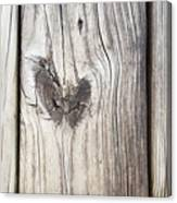 Heart Of Wood Canvas Print