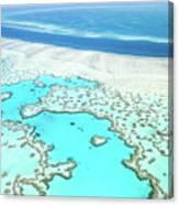 Heart Reef Canvas Print