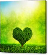 Heart Shaped Tree Growing On Green Grass Canvas Print