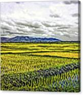 Heartland Oil Canvas Print