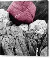 Heartrock Canvas Print