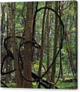 Hearts In The Woods Canvas Print