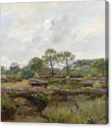 Heather Landscape Canvas Print