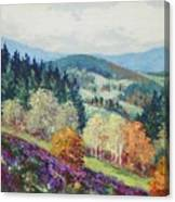 Heather Meadow Canvas Print