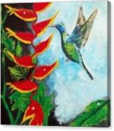 Heavenly Heliconia Canvas Print