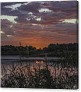 Heavenly Pink Canvas Print