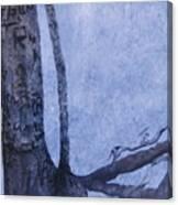 Hedden Park II Canvas Print