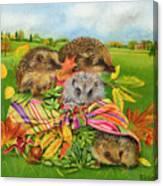 Hedgehogs Inside Scarf Canvas Print