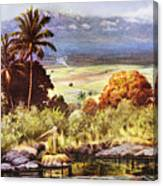 Helen Dranga Art Canvas Print