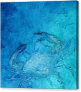Helene's Crab Canvas Print