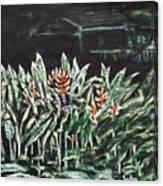 Heliconia 3 Canvas Print