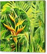 Heliconia 8 Canvas Print