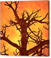 Hell Canvas Print
