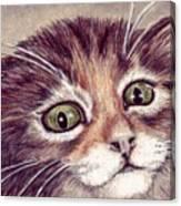 Hello Clarice Canvas Print