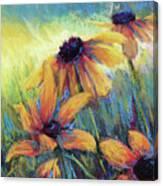 Hello Sunshie Canvas Print