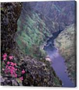 Hells Canyon Canvas Print