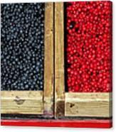 Helsinkian Berries Canvas Print