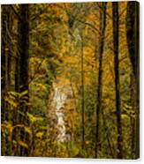 Helton Falls Through The Leaves Canvas Print