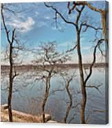 Hempstead Harbor Through The Trees Canvas Print