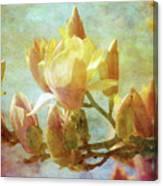 Herald Spring 8878 Idp_2 Canvas Print