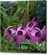 Herd Of Watering Cans Canvas Print
