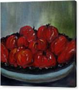 Heritage Tomatoes Canvas Print
