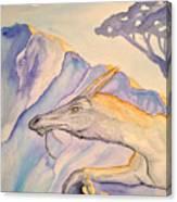 Hermit Canvas Print