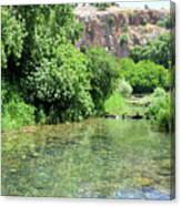 Hermon Stream Nature Reserve Canvas Print