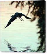 Heron At Dusk Canvas Print