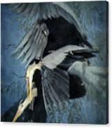 Heron Love  Canvas Print