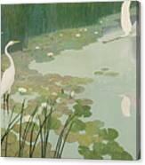 Herons In Summer Canvas Print